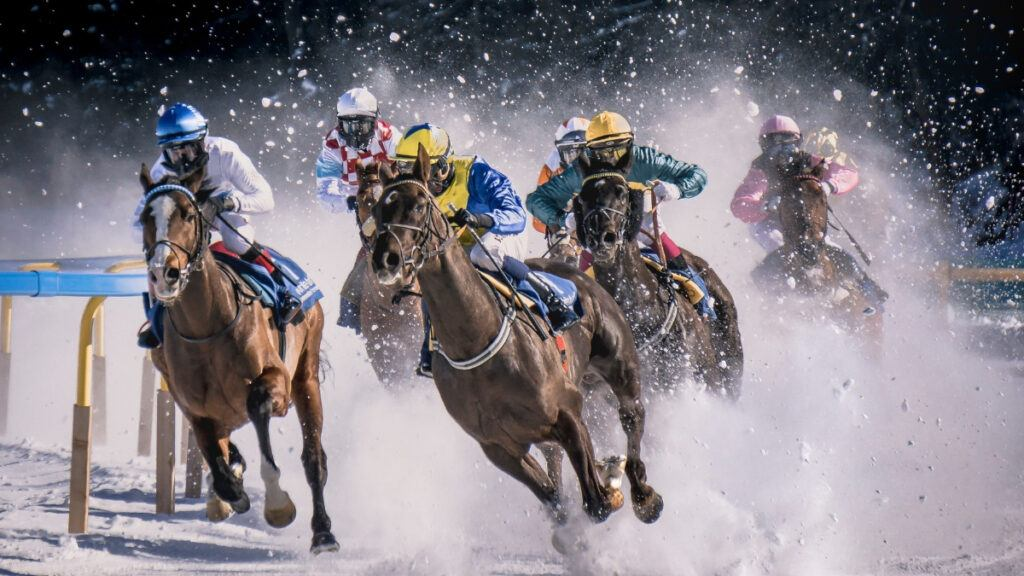 Horse Racing in Snow