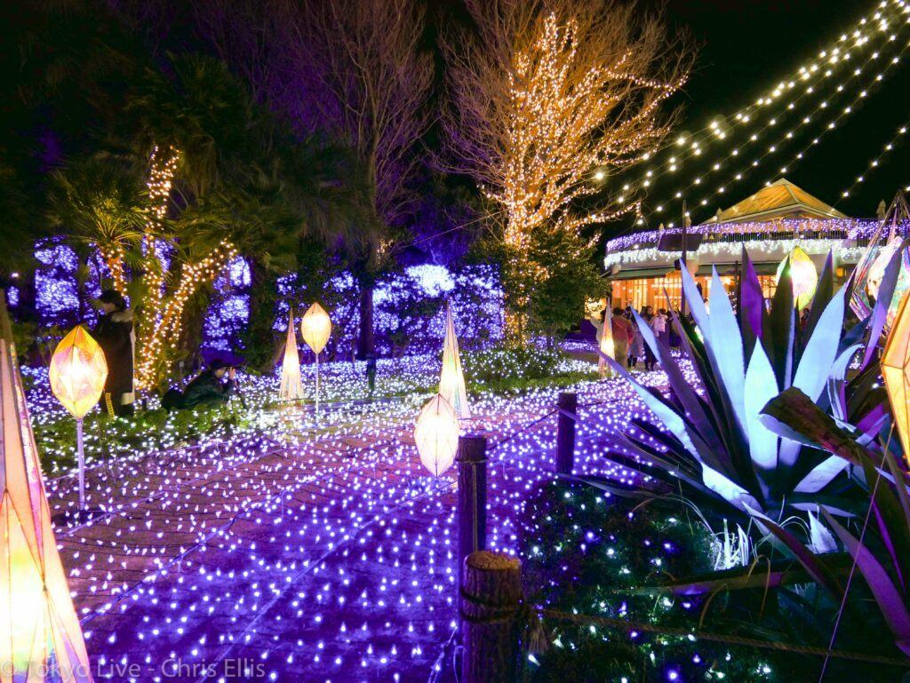 Enoshima Illumination Lights