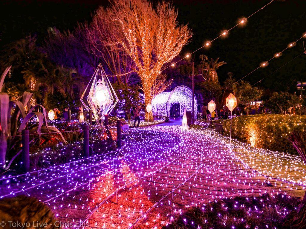 Enoshima Illumination Garden View