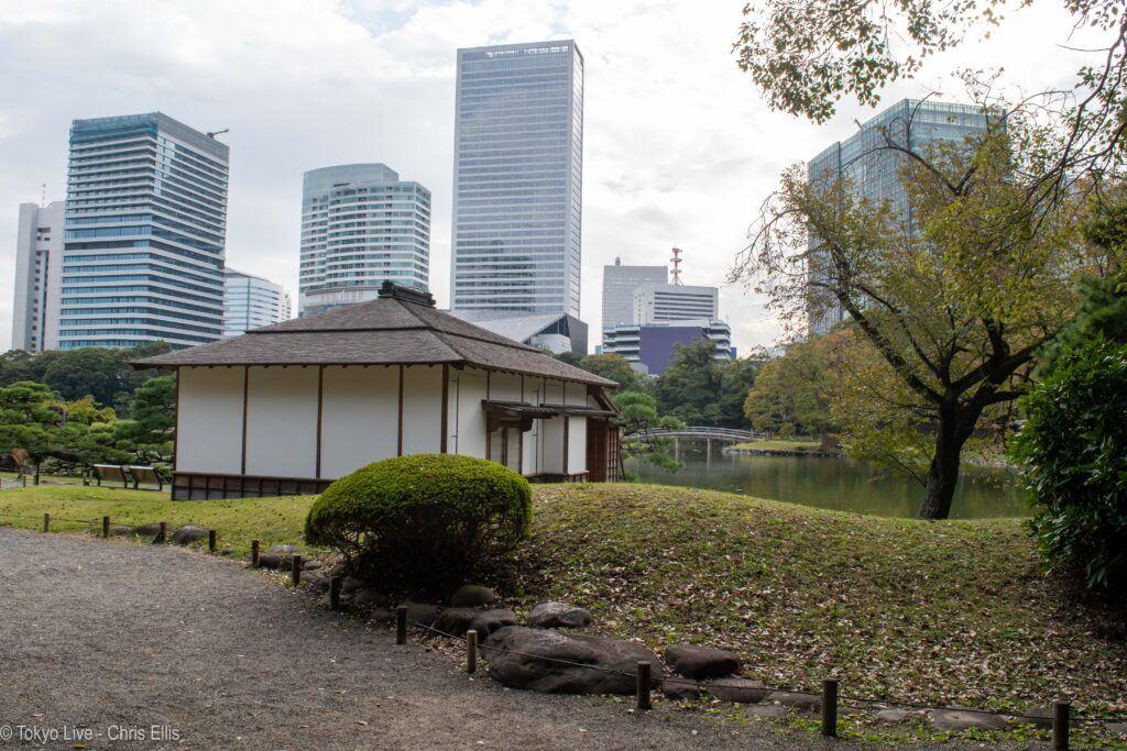 Amazing Japanese Gardens in Tokyo